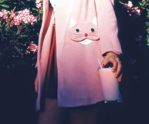 fashion, cat, and pink image