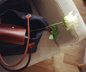 afternoon, bag, and rose image