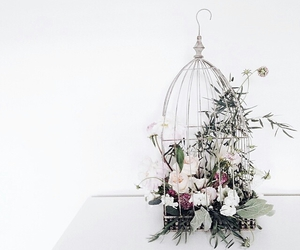 cage, decor, and flowers image