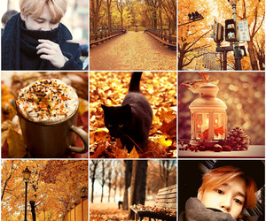 autumn, fall, and jin image