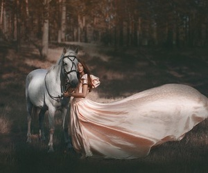 animals, fairytale, and horse image