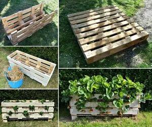 diy, gardening, and planter image