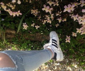 adidas, aesthetic, and flower image
