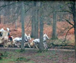 carriage, forest, and horses image