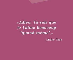 amour, french, and je t'aime image