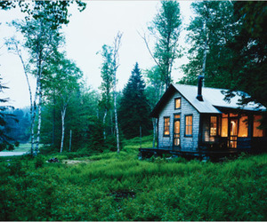 house, light, and trees image