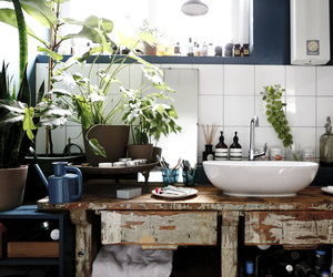 interior, plants, and bathroom image