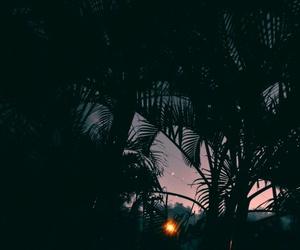 beautiful, california, and sunset image
