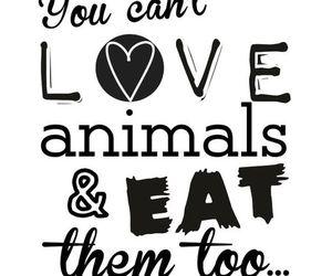 vegan, veganism, and govegan image