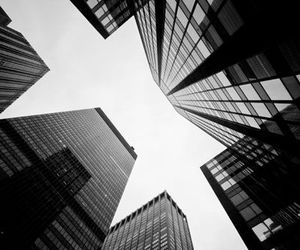black, black and white, and buildings image