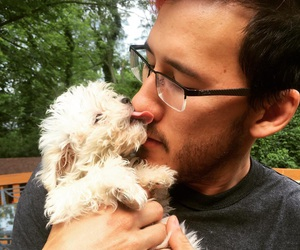 markiplier, puppy, and youtube image
