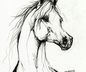 horse, drawing, and draw image