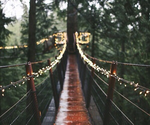 bridge, colours, and rain image