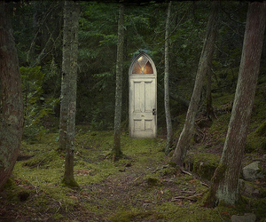 door and forest image