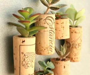 plants, cork, and diy image