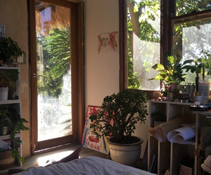 room, plants, and green image