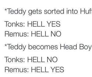 hell, hp, and teddy image