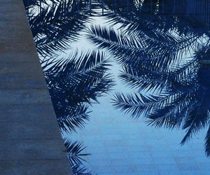 blue, water, and palms image