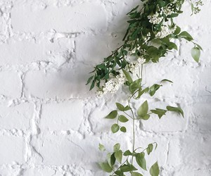 white, flowers, and green image