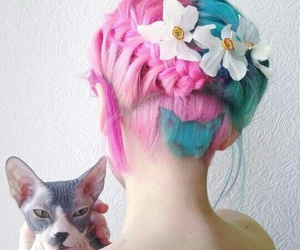 hair, cat, and pink image