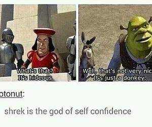 funny, shrek, and lol image