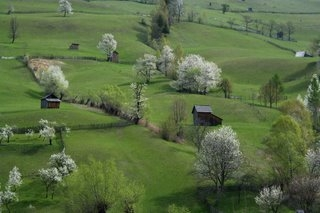 country-side, hills, and meadows image