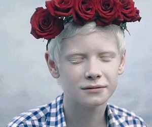 boy, rose, and albino image