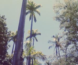 riodejaneiro and rio de janeiro viagem image