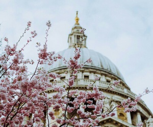blossom, architecture, and church image