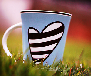 heart, mug, and grass image
