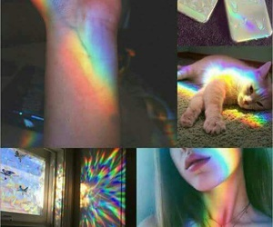 rainbow, cat, and girl image