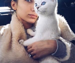 luxury, sexy, and stylish image