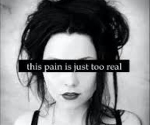 pain, evanescence, and amy lee image