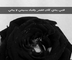 snap, love, and حُبْ image