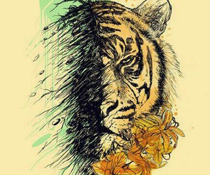 design and tiger image