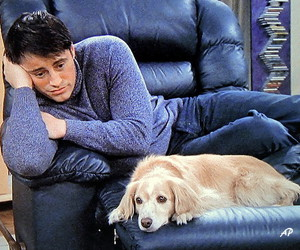 celebrities, dog, and joey tribbiani image