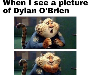 funny, zootopia, and teen wolf image