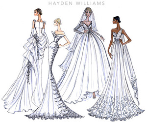 hayden williams image