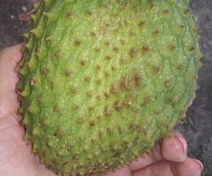 fruta, rica, and corazón image