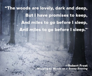 robert frost, snow, and writing image