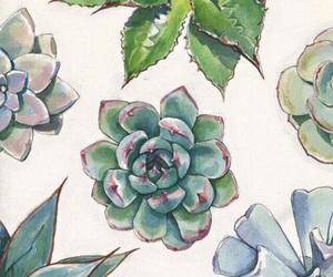 art, succulent, and cactus image