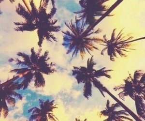 summer, emoji, and palm trees image