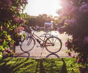 bicycle, bike, and inspiration image