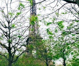 eiffeltower, france, and green image