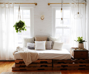 bed, plant, and room image