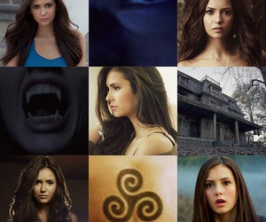 Nina Dobrev and elena gilbert image