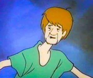 cartoon, scooby doo, and shaggy rogers image
