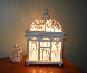 light, cage, and fairy lights image
