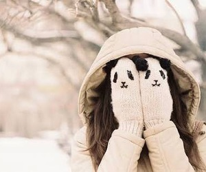mittens, snow, and winter image