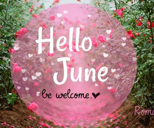 hello, june, and pink image